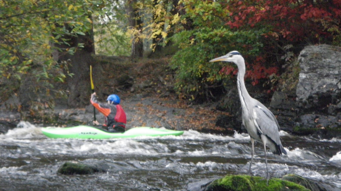 Kayak – White Water Award